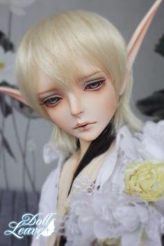 Evan      doll-leaves.com  $370.00