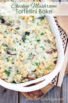 Chicken Mushroom Tortellini Bake: Tortellini pasta baked with chicken and mushrooms in a creamy sauce.