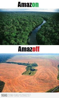 In anticipation of Earth Day, here's a link to learn more about deforestation…
