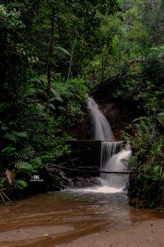 a small waterfall at Fraser Hill, Malaysia Fraser Hill, Small Waterfall, Holiday, Outdoor, Outdoors, Vacations, Holidays, Outdoor Games, The Great Outdoors