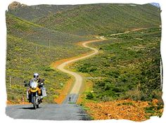 Gravel roads in the Tankwa Karoo Park - Tankwa Karoo National Park, National Parks in South Africa South Africa Tours, Succulent Species, Out Of Africa, Travel Info, Touring, Flora, Succulents, National Parks, Landscapes