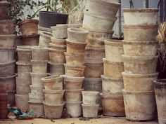 weathered clay pots - let your terracotta pots weather - Don't clean them. Grow flowers, edibles and greenery in various sizes of pots, that are dispersed around the grounds of you cottage. Pot or container gardening should be a part of your lifestyle.