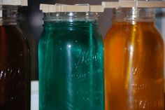 4-H Projects- Stock Show projects