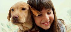 Algunos animales hacen mucho más que compañía. Perros, gatos o caballos pueden participar en algunas terapias y utilizarse para ayudar a sanar a los pacientes.