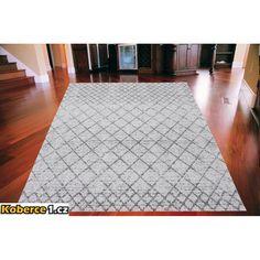 Kusový koberec Nana šedý