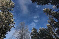 Высокое и ясное небо Горного Алтая.  Климатической особенностью Республики Алтай является высокий уровень солнечной инсоляции, фактически годовое количество солнечных дней в горах и предгорьях составляет такое же количество как в Крыму и Северном Кавказе и немного уступает Туве. В среднем Солнце светит в четырех случаях из пяти. Фактически, в большинстве случаев, это гарантирует хорошую погоду, и следовательно хорошее настроение. Как говорят люди: «Небо здесь такое яркое и чистое и…