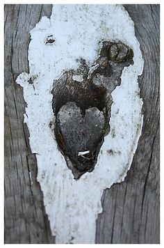 <3, I see the heart.....photo by Elina Kinnunen