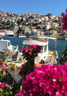 Colourful Symi / Greece