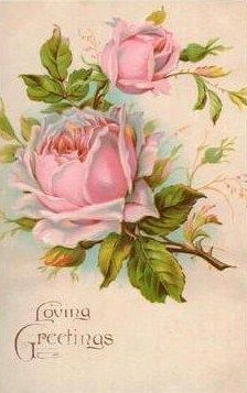 pink vintage roses - would make a beautiful china painting pattern Vintage Rosen, Vintage Diy, Vintage Cards, Vintage Postcards, Art Floral, Images Vintage, Vintage Pictures, Botanical Illustration, Botanical Prints