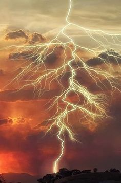 AWESOME! #lightning #tree #comparason