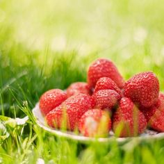 -BLEN: Strawberry Jelly-  strawberries Fruit Love, Red Fruit, Picnic Time, Summer Picnic, Summer 3, Strawberry Fields Forever, Strawberry Jelly, Fruit Photography, Company Picnic