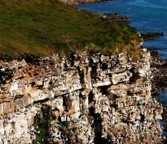 Visit one of Europe's largest nesting cliffs with over 50 species and nesting kittiwakes. Motorcycle Travel, Visit Norway, Local History, Nature Reserve, Cliff, Countryside, City Photo, Trail, Europe