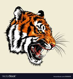 Angry Tiger Head Vector Clipart Eps Images Angry Tiger - Angry Tiger Head Sitting Growling Shield Retro Eps Vector By Patrimonio Angry Tiger Head Clipart Vector By Rautanstudio Tiger Face Vectors Illustration By Premiumdesign Angry Tiger Head Tattoo, Head Tattoos, Tatoos, Tiger Illustration, Tiger Drawing, Tiger Art, Tiger Design, Angry Tiger, Tiger Vector