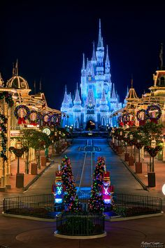 Walt Disney World: Orlando, Florida Walt Disney World, Disney Parks, Disney World Fotos, Disney World Christmas, Disney World Pictures, Disney World Florida, Disney Worlds, Disneyland Christmas, Disney Dream
