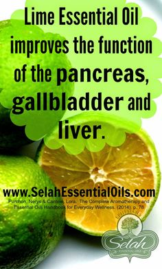 Lime essential oil and the Pancreas, Gallbladder and Liver | Selah's Oily Blessings