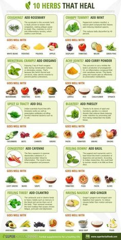 10 Culinary Herbs And Spices With Remarkable Health Benefits