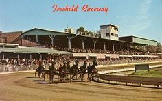 Vintage shot of Freehold Raceway - the nation's oldest and fastest daytime half mile harness racing track.  This is where we used to watch fireworks on July 4th