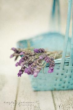 In The Mood For... Lavender with Turquoise basket with lavender