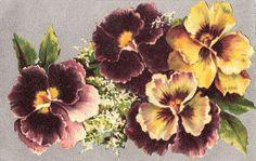 Flowers703