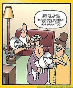 Humour as therapy. www.sacredbydesign.com.au