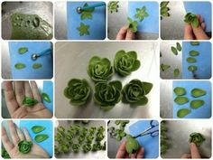 MINI MODELLING CHOCOLATE SUCCULENTS – TUTORIAL succulent-steps