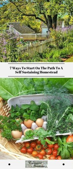7 Ways To Start On The Path To A Self Sustaining Homestead #Prepperpantry