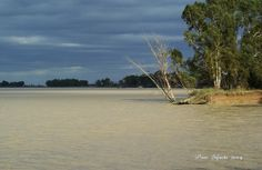 Marisma y campiña Country Roads, Beach, Water, Outdoor, Campinas, Culture, Gripe Water, Outdoors, The Beach