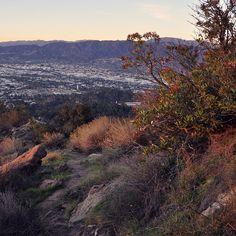 Hollywood Hills Hiking Trails