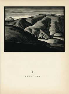 Siesta on a Sultry Day - 50 Watts. Paul Landacre, California Hills and Other Wood Engravings, 'Point Sur' via UCI Libraries