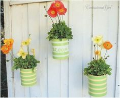 Cute idea! Spray paint an old paint can, poke holes in the bottom & use as hanging planters!