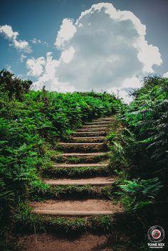Plouzané sentier de randonnée du Petit Minou by TOine BzX | par TOine BzX