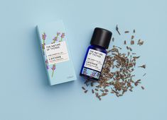 Nature of Things - Lavender (French) Essential Oil Natural To Relaxed Hair, Lavandula Angustifolia, Oil Benefits, Flower Oil, Sweet Notes, Carrier Oils, Massage Oil, Hair Oil, Lavender