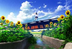 Anime school girl, sunflowers, , river,
