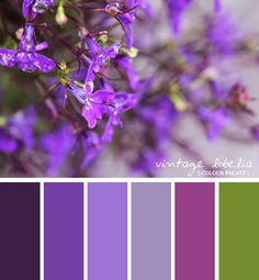 vintage lobelia colour palate