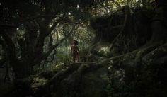 jungle-book-images-3-700x409