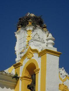 Ninho de cegonha no Algarve