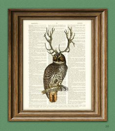 Owl with Antlers 'The Forest Elder' print over an upcycled vintage dictionary page book art