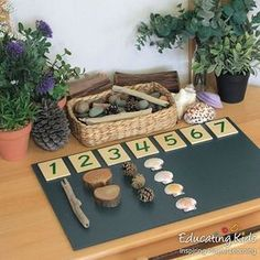 Counting with nature 🐚🌱🌲 educatingkids inspiring playful learning investigate education educate kindergarten preschool… Nature Activities, Counting Activities, Montessori Activities, Preschool Learning, Kindergarten Activities, Toddler Preschool, Early Learning, Preschool Activities, Teaching Kids