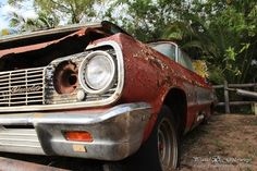 Rusted old cars