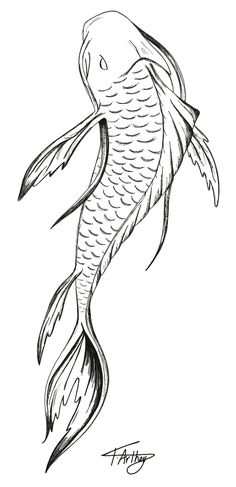 """Koi fish are the domesticated variety of common carp. Actually, the word """"koi"""" comes from the Japanese word that means """"carp"""". Outdoor koi ponds are relaxing. Koi Tattoo Design, Tattoo Designs, Design Tattoos, Circle Tattoo Design, Circle Tattoos, Pez Koi Tattoo, Carp Tattoo, Tattoo Ink, Sleeve Tattoos"""