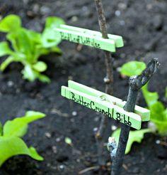 easy diy garden markers, crafts, gardening, how to, repurposing upcycling Garden Crafts, Diy Garden Decor, Garden Projects, Easy Garden, Garden Ideas, Garden Decorations, Garden Labels, Plant Labels, Gardening Supplies