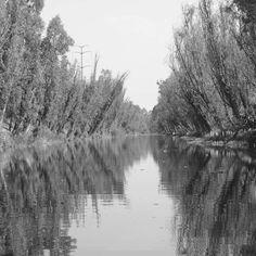 #xochimilco #canal #cuemanco