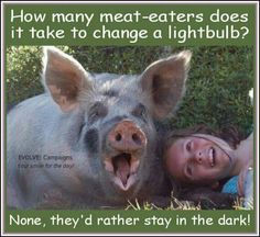 I respect meat eaters just as I hope they would respect me. But realistically they are lacking in morality.