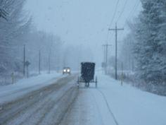 Amish - Central NY - Cold