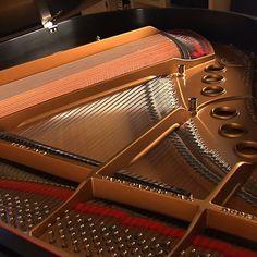 ILLUMINATI - Piano Strings by The Lizard King