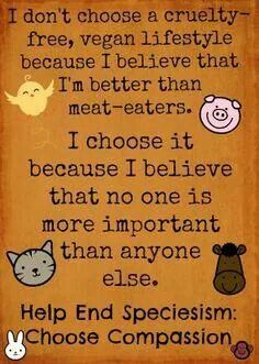 I don't choose a cruelty free vegan lifestyle because I believe that I'm better than meat-eaters. I choose it because I believe that no one is more important than anyone else. Help end speciesism. Vegan Memes, Vegan Quotes, Vegan Facts, Why Vegan, Vegan Vegetarian, Vegetarian Memes, Vegan Raw, Reasons To Go Vegan, Stop Animal Cruelty