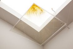 Joe Zorrilla, honey on plexi under a skylight Hannah Hoffman Gallery, L. Skylight, Plexus Products, Honey, Ceiling Lights, Gallery, Home Decor, Art, Art Background, Decoration Home