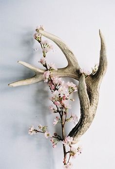 DIY antlers + flowers decoration