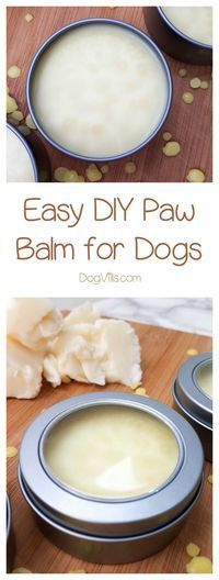 Are your dogs' paws a little rough? Whip up this DIY paw balm in just a few minutes! Bonus: you can even use it on YOUR hands! dog paw balm Easy DIY Paw Balm Recipe to Smooth Your Dogs' Rough Pads - DogVills Puppy Treats, Dog Care Tips, Pet Care, Pet Tips, Homemade Dog Treats, Diy Stuffed Animals, Dog Grooming, Dog Food Recipes, Your Dog