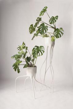 TIM VAN DE WEERD, Monstera Magnifica en Monstera Fugiens plantenpotten prikkelen de fantasie. Beweging is mooi geïntegreerd in de ontwerpen #DDW2014